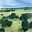 Thumbnail: Cattle Country   61cm x 61cm