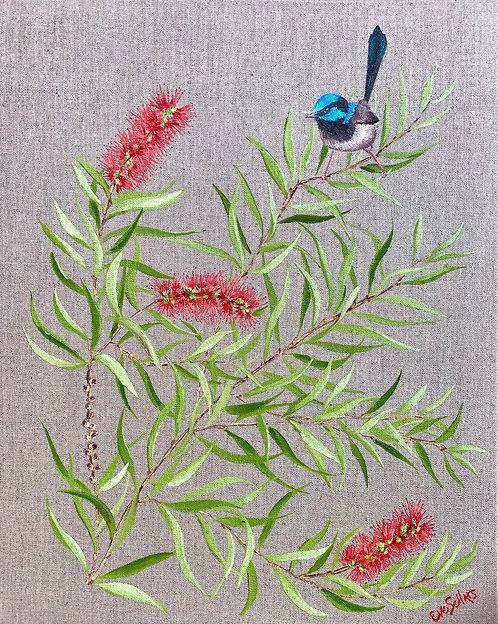 Blue Wren and the Bottlebrush | 40 x 50cm