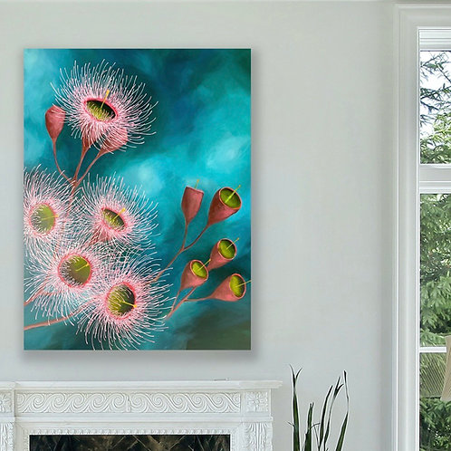 Beautiful Eucalyptus Blooms   91cm x 122cm