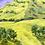 Thumbnail: Pasture Out Past Yea, Victoria | 76cm x 61cm