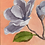 Thumbnail: Petals | 20cm x 25cm