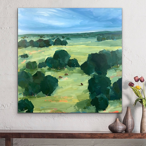 Cattle Country   61cm x 61cm