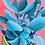 Thumbnail: Succulent | 30 x 30cm