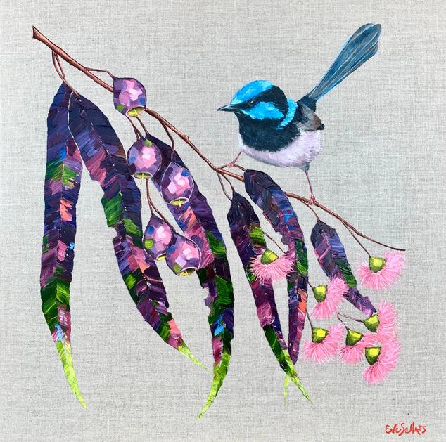 Blue Wren in the Garden / 61x61cm / $650
