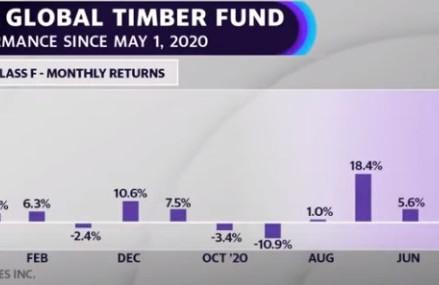 Stavební dřevo: Náhle je z něj jedna z nejsledovanějších komodit současnosti…