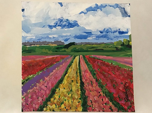 Field of Tulips, by Colleen Ford
