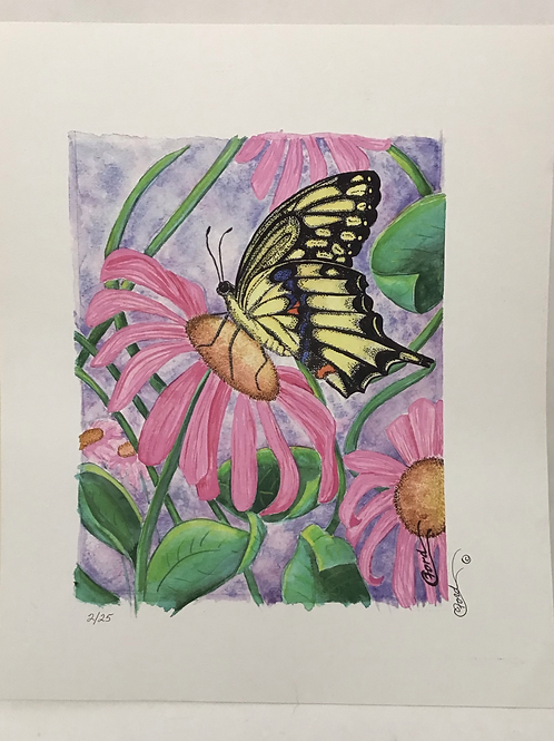 Butterfly, by Colleen Ford