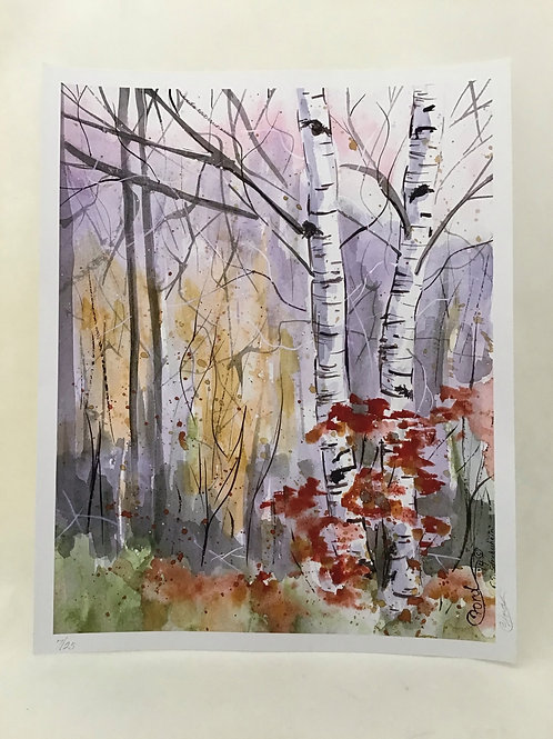 Ridge Birches, by Colleen Ford
