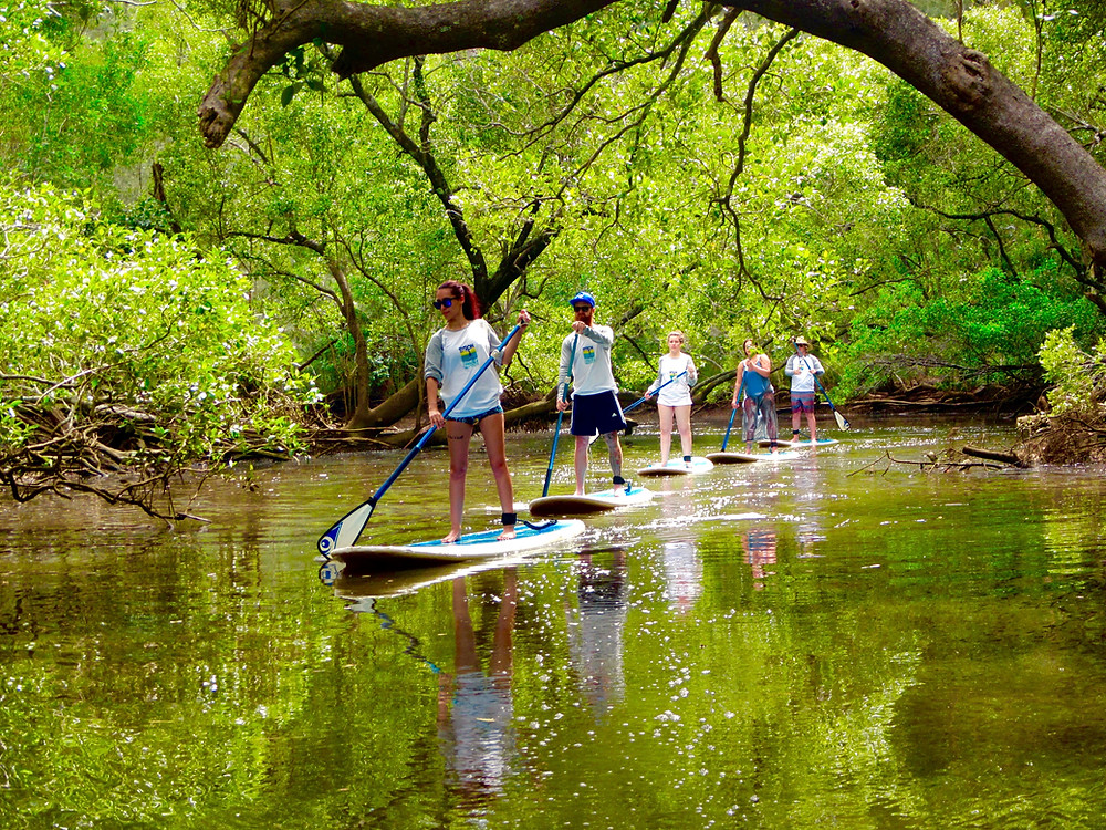 Peaceful paddling with Byron Stand Up Paddle