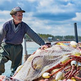 O velho e o mar e o empreendedorismo