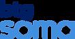 BTGT.0000.AF.200727_BTG_SOMA_Logo_RGB.png