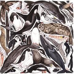 Antarctic jigsaw design