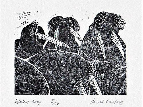Walrus heap