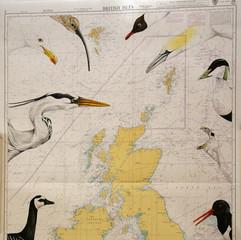Illustrated Seachart - British Isles