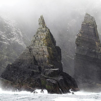 wild Little Skellig