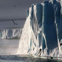 Brasvellbreen glacier, Svalbard