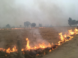burning stubble by farmers