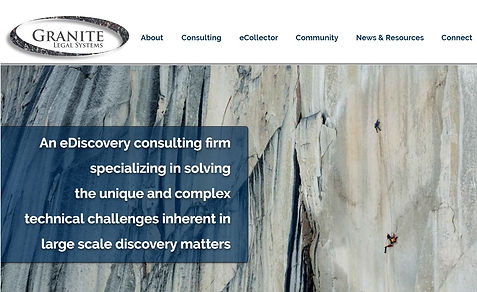 ediscovery consulting