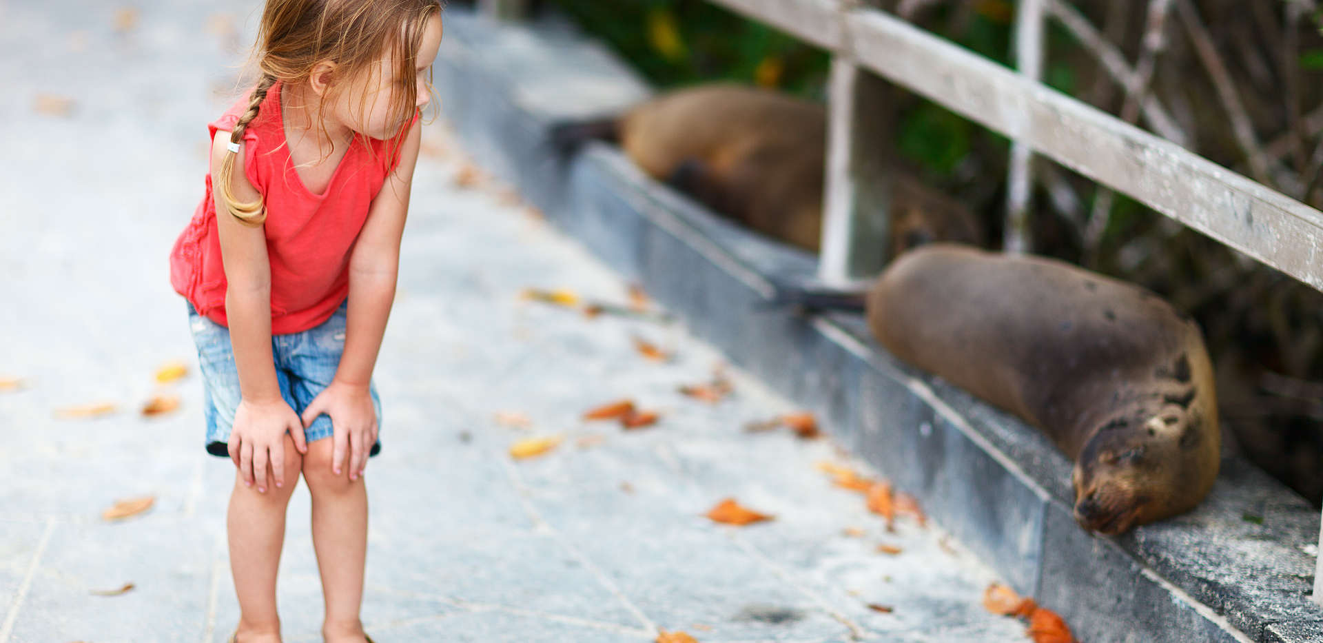 kid-galapagos-sea-lion-ecuador-wise-dest