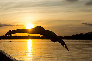 amazon-jungle-river-sunset-girl-jumping-