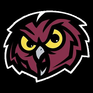 temple-owls-logo-png-transparent.png