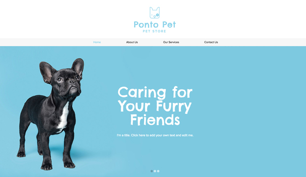 Kjæledyr og dyr website templates – Pet Shop