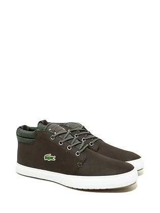 LACOSTE AMPTHILL TERA