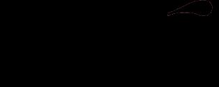 exe logo2