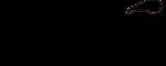 exe logo2.png