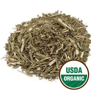 Vervain (Verbena officinalis) - Organic