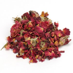 Red Rose Buds and Petals (Rosa centifolia)