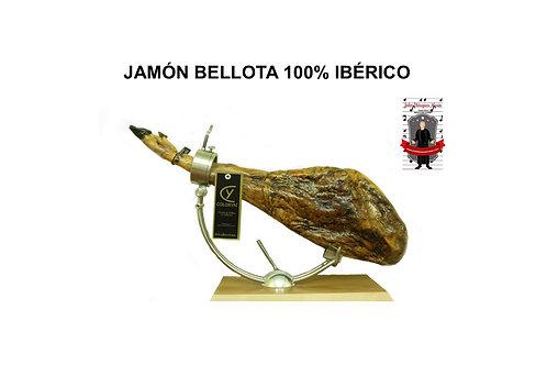 LOTE GOURMET 7 - 15 sobres (80gr) Jamón Bellota 100% ibérico