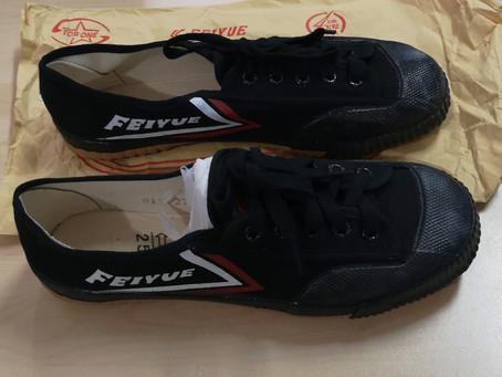 Tai Chi Shoes FUIYUE