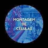 Montagem_de_Células.png