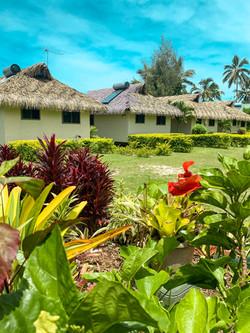 Muri-shores-garden-view