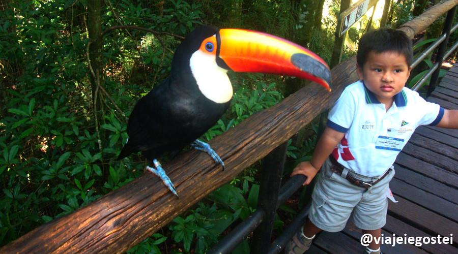 Parque das Aves: Crédito: Viajei e Gostei