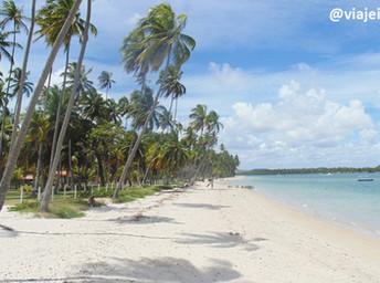 Tudo sobre Carneiros, eleita a 2ª praia mais bonita do Brasil