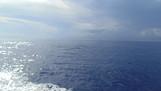 Conhecendo Cozumel e seu incrível mar azul