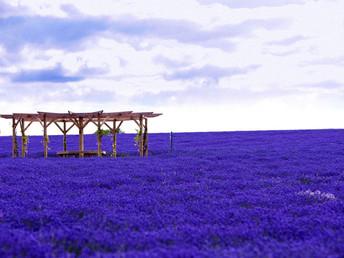 Os 10 lugares mais coloridos do mundo