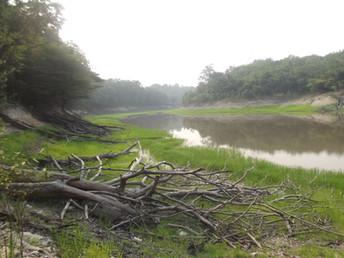 Manaus e os passeios pela Floresta Amazônica