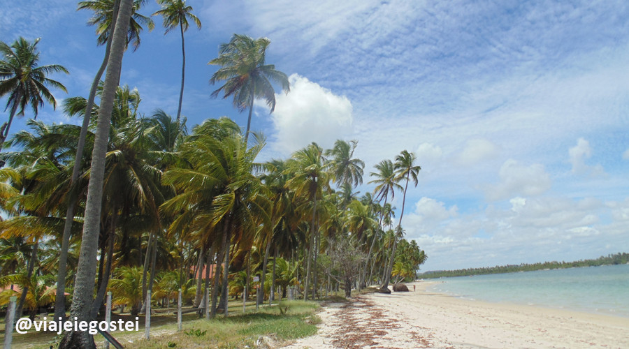 Praia_de_Carneiros5_-_Crédito_Viajei_e_Gostei.JPG