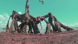 Ilha de Santana - Amapá - 2014