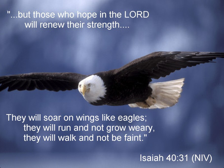Lessons From the Eagle