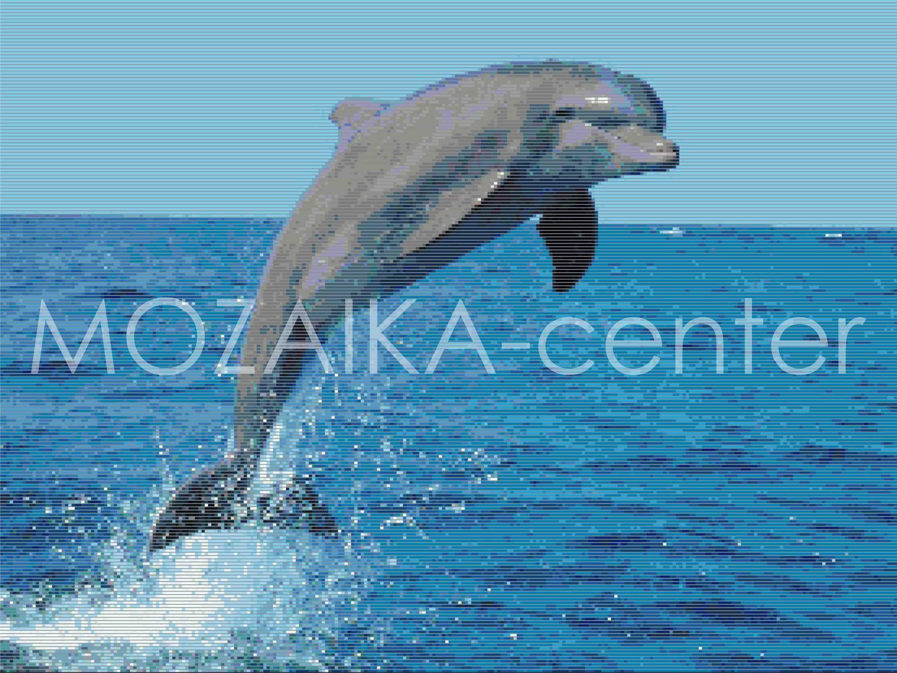 Выпрыгивающий из воды дельфин, фото фотография картинка обои.