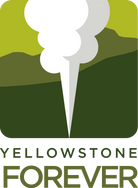 YF_Logo_Vertical_RGB.png