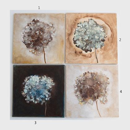 Hydrangea/ oil painting 20X20cm