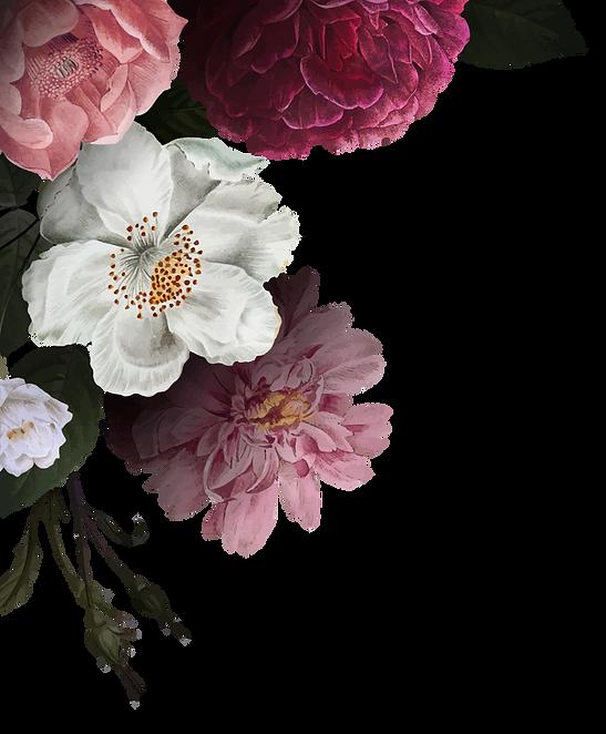 rosas 1.png