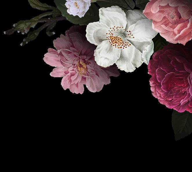 rosas 2.png