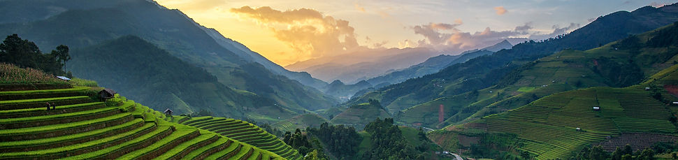 psia-panorama-rice-fields-terraced-sunse