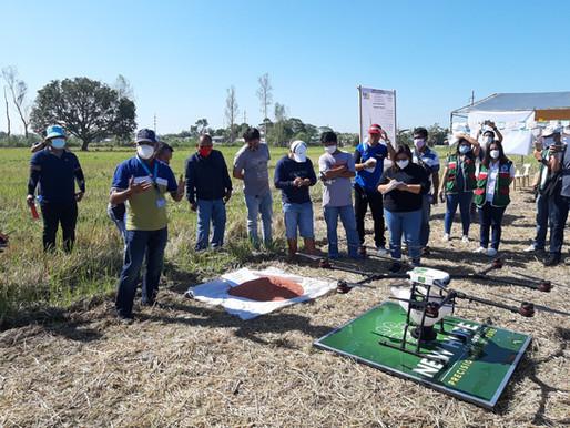 AI-driven drone revolutionizes PH rice farming with Bayer demo in Tarlac